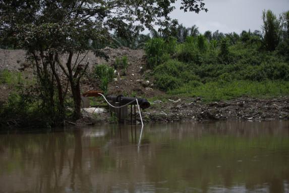 La palma (y sus tuberías) colindan con el río La Pasión.