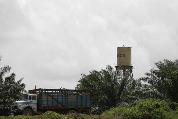 Reforestadora de Palma de Peten S A Repsa en el rio La Pasion Sayaxche-9