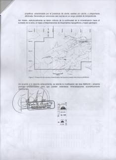 Una de las páginas de la solicitud de ampliación de Marlin a las que tuvo acceso Nómada.