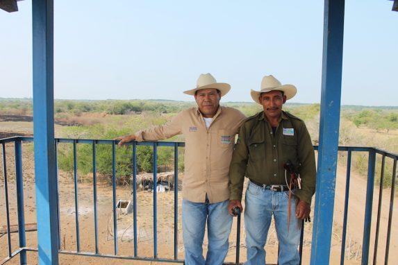 José Antonio Hernández (izquierda) y José Horacio Soriano (derecha), Guardianes de Recursos Naturales en la comunidad de La Canoa, miran desde una torre de observación de incendios en el borde de los manglares. Foto de Martha Pskowski para Mongabay