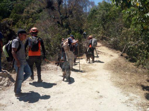 Momento de la búsqueda de Catherine en el cerro Rostro Maya. (Foto: PNC)