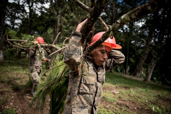 """Oficiales del ejército cargan con ramas de los árboles que talaron en el terreno asignado para construir """"Mi Querida Familia"""". Aún no tenían la licencia ambiental que les autorizaba talar árboles."""