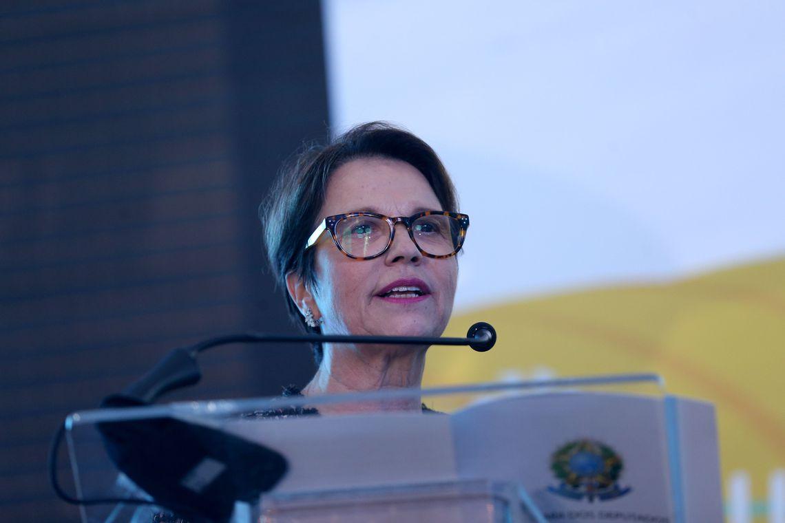 Teresa Cristina, ministra de la agricultura. Foto: Wilson Dias/Agência Brasil