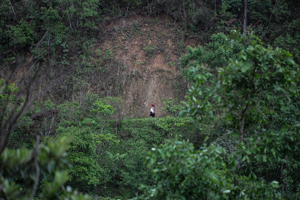 Mujeres han quedado solas en Huehuetenango, en ocasiones trabajan en el corte del café, pero no siempre es así. Las remesas y la mejora en la calidad de vida que representa les permite ya no aceptar trabajos mal pagados. Foto: Carlos Sebastián