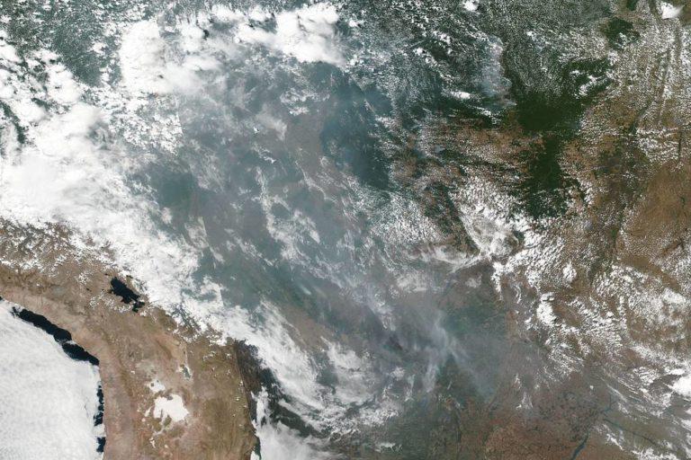 Imágenes satelitales muestran el desplazamiento de la contaminación generada por los incendios en la Amazonía. Foto: NASA Worldview, Earth Observing System Data and Information System (EOSDIS). Caption: Lynn Jenner.